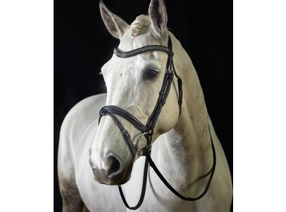 Monarch Crystal Flash Bridle