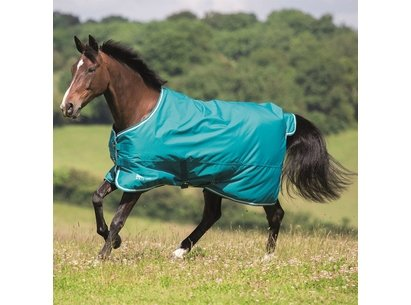Shires Tempest Original 50gm Turnout