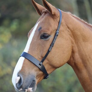 Shires Blenheim Noseband
