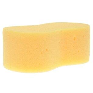 Lincoln Dogbone Sponge