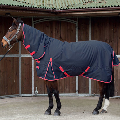 Requisite Combo 600 Medium 220g Turnout Rug