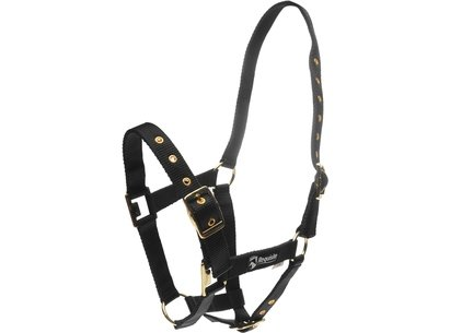 Requisite Adjustable Headcollar