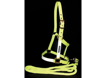 Harry Hall Hi Viz Headcollar and Lead Rope