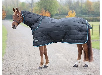 Shires Tempest Original 200 Stable Combo
