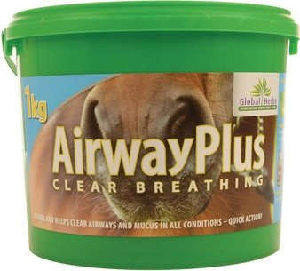 Global Herbs Airway Plus Powder