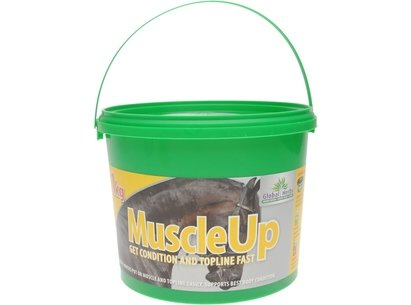 Global Herbs Muscle Up Supplement