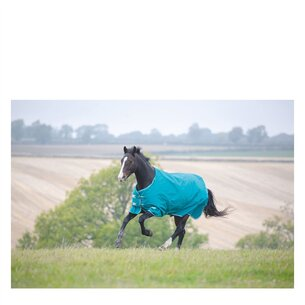Tempest Orginal Plus 200g Turnout Standard Rug