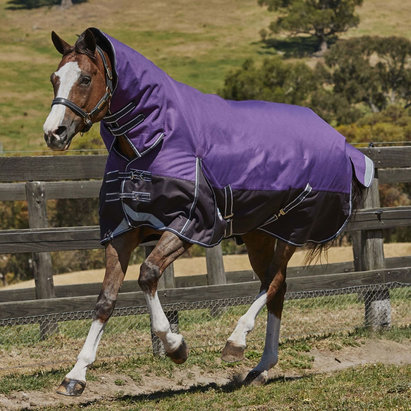 Weatherbeeta ComFiTec Plus Dynamic Combo 100g Turnout Rug