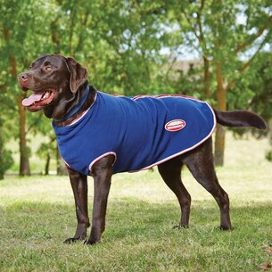 Weatherbeeta Zip Dog Coat