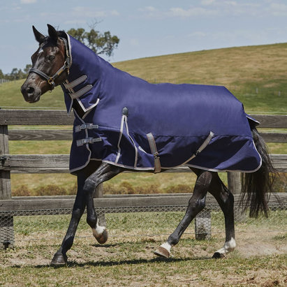 Weatherbeeta ComFiTec Essential Combo Neck Medium 220g Turnout Rug