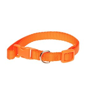 Pet Brands Collar Small 91