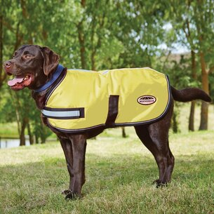Weatherbeeta Reflective Parka Dog Coat