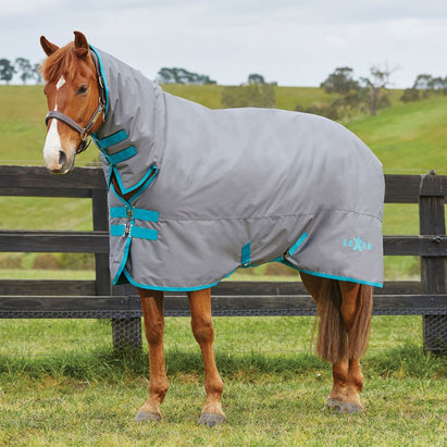 Saxon 600D Combo Neck Heavy 300g Turnout Rug