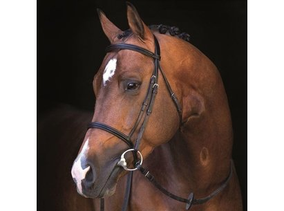 Mio Leather Bridle