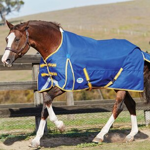 Weatherbeeta Comfitech Plus Dynamic Lightweight Pony Turnout