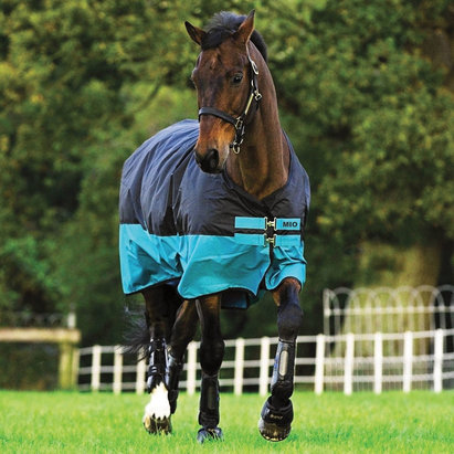 Mio Medium Standard Neck 200g Turnout Rug