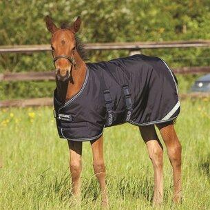 Amigo 200g Turnout Foal Rug