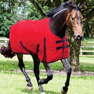 Requisite Standard 600D Lite 0g Turnout Rug