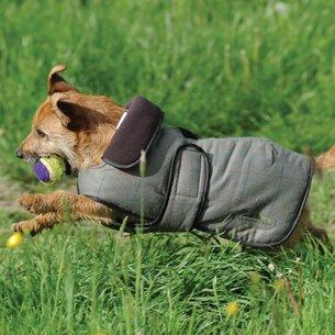 Weatherbeeta Tweed Dog Coat