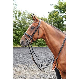 John Whitaker Barton Bling Flash Bridle