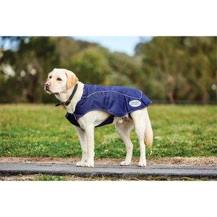 Weatherbeeta 1200D Exercise Dog Coat Navy