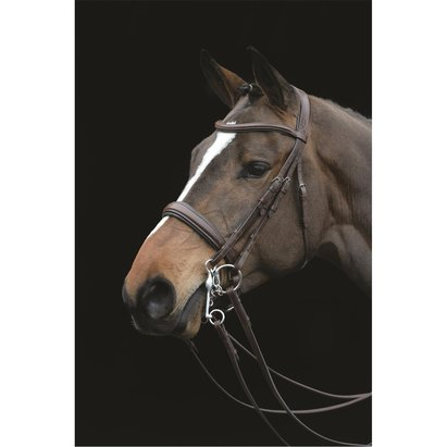 Collegiate Mono Crown Padded Raised Weymouth Bridle Brown