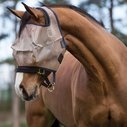 Fly Mask with No Ears