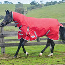 Comfitec Classic Lite Pony Combo 0g Turnout Rug