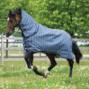 Plus Medium 200g Turnout Rug