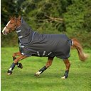 Bravo 12 Plus With Front Disc Closure 250g Turnout Rug