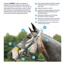 ComFiTec Training Bridle