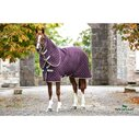 Disc Front Plus 200g Stable Rug - Fig/Tan