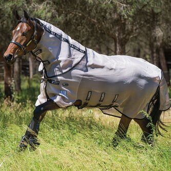 Fly Buster with Vamoose Fly Rug