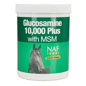 Glucosamine 10 000 Plus MSM