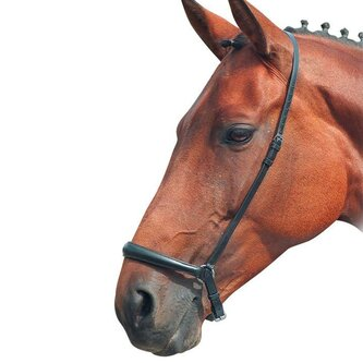 Blenheim Drop Noseband