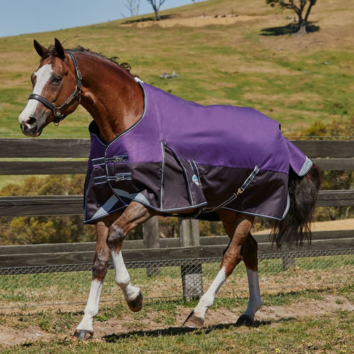 ComFiTec Plus Dynamic Standard Neck Medium Light 220g Turnout Rug