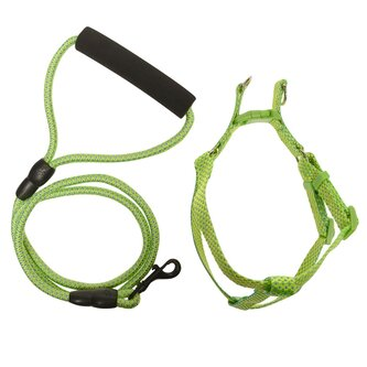 Dog Leash Harness 91