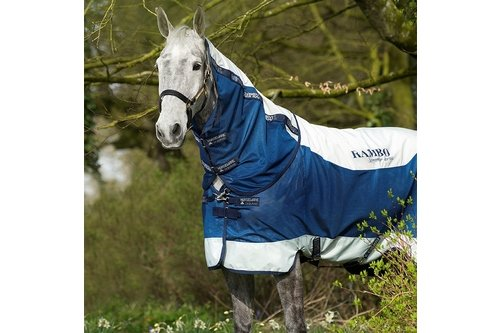 Summer Series 100g Turnout Rug