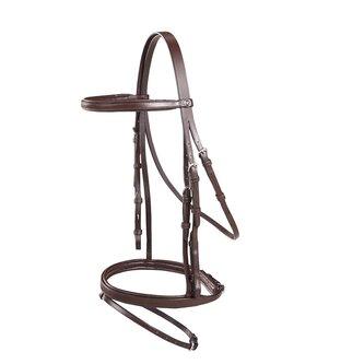 Colt Flash Bridle