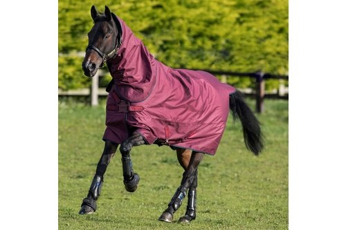 Hero ACY Plus 200g Turnout Rug with Disc Closure