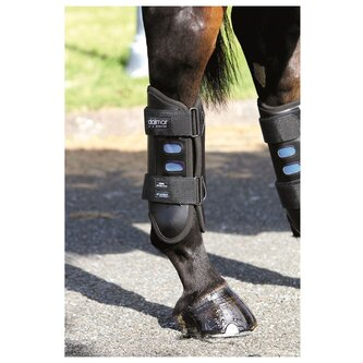 Eventer Hind Boot