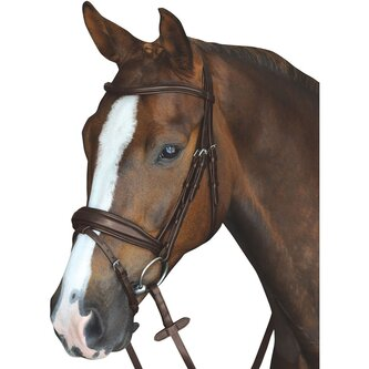 Mono Crown Padded Raised Flash Bridle