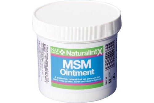 NaturalintX MSM Ointment