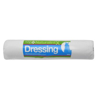 Naturalintx Wound Dressing